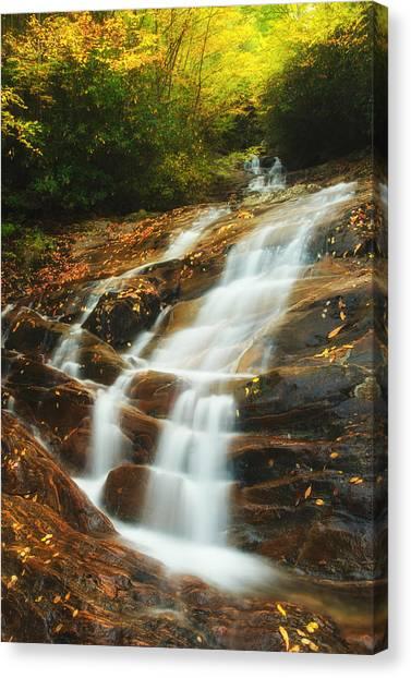 Waterfall @ Sams Branch Canvas Print