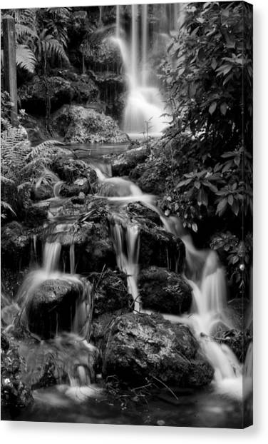 Waterfall At Rainbow Springs Canvas Print
