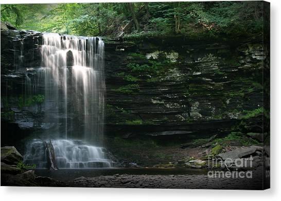 Waterfall At Ricketts Glen Canvas Print
