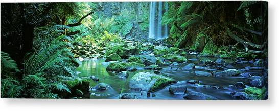 Victoria Falls Canvas Print - Waterfall In A Forest, Hopetown Falls by Panoramic Images