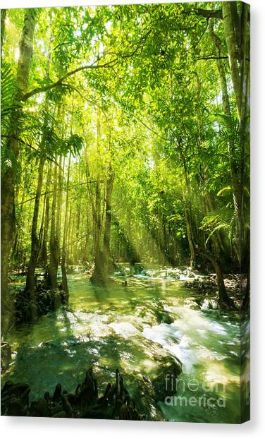 Foggy Forests Canvas Print - Waterfall In Rainforest by Atiketta Sangasaeng