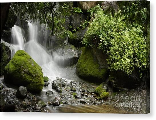 Waterfall Mist Canvas Print