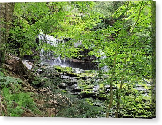 Waterfall Ricketts Glen State Park Pa Canvas Print