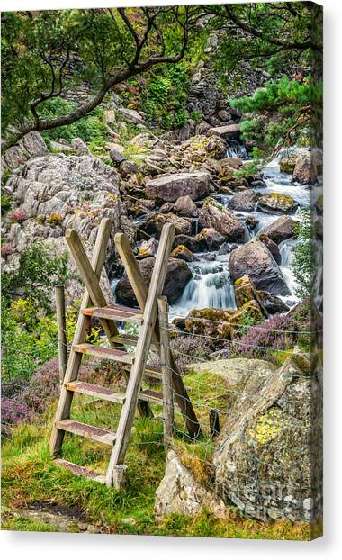 Ogwen Canvas Print - Waterfall Way by Adrian Evans
