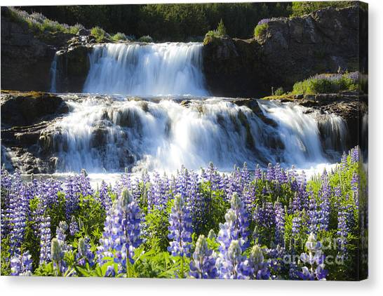 Waterfall With Flowers Canvas Print