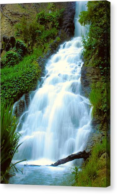 Waterfalls In Golden Gate Park Canvas Print