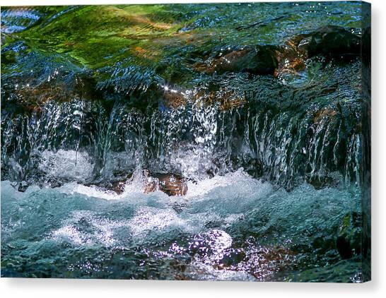 Waterflow Canvas Print