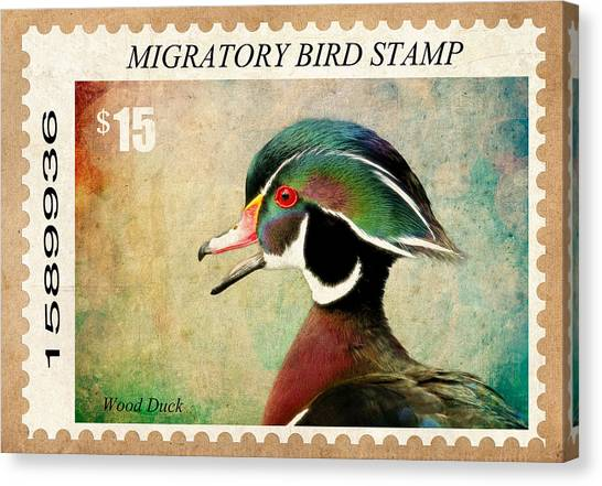 Canvas Print - Waterfoul Stamp by Steve McKinzie
