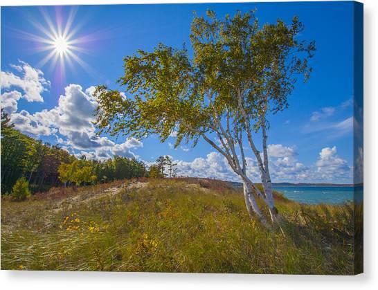 Waterfront Sunshine Canvas Print