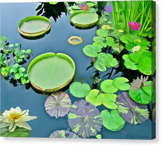 Watergarden  Canvas Print by Debra     Vatalaro