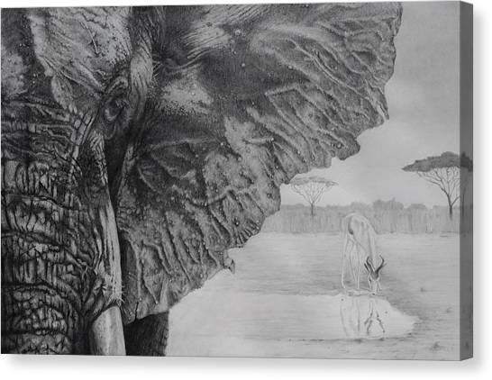 Waterhole Canvas Print