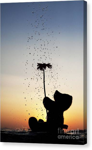 Teddy Bears Canvas Print - Watering A Flower by Tim Gainey