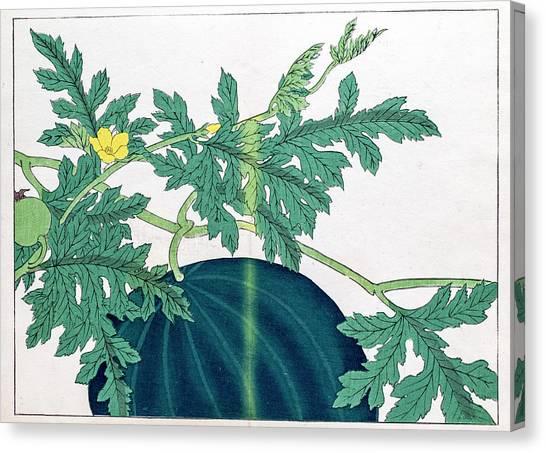 Printmaking Canvas Print - Watermelon Japanese Woodblock Print by Mashuk