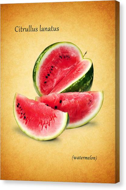 Melons Canvas Print - Watermelon by Mark Rogan