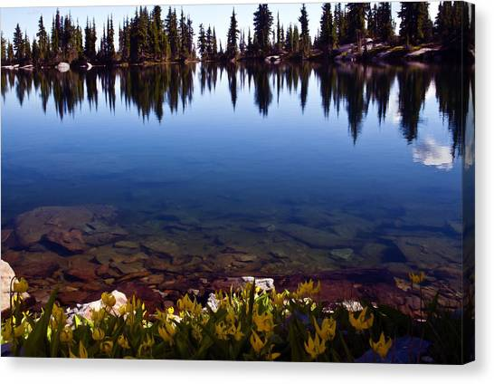 Water's Edge Canvas Print by Randolph Fritz