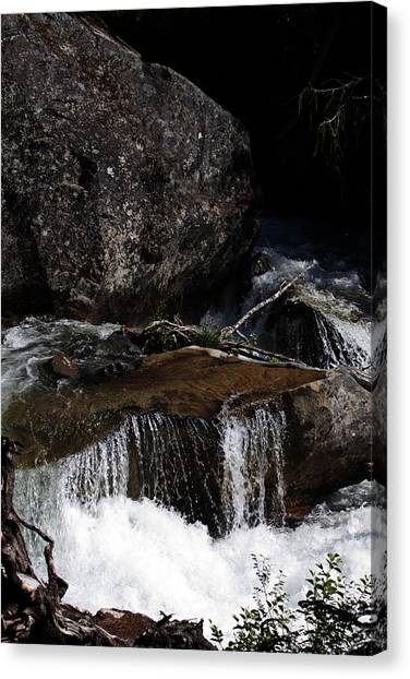 Water's Flow Canvas Print