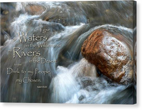 Waters In The Wilderness Canvas Print