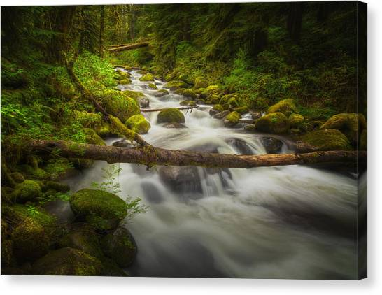 Waters Of Larch Mountain Canvas Print