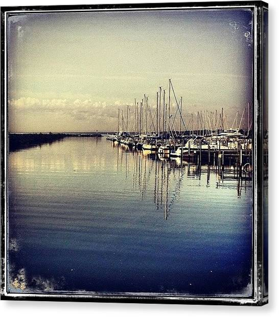 Loons Canvas Print - Waukegan Harbor, Early Morning Today by Jenny Moran