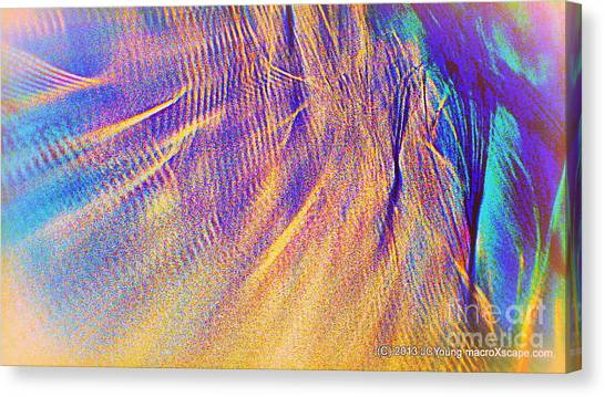Wave Canvas Print by JCYoung MacroXscape