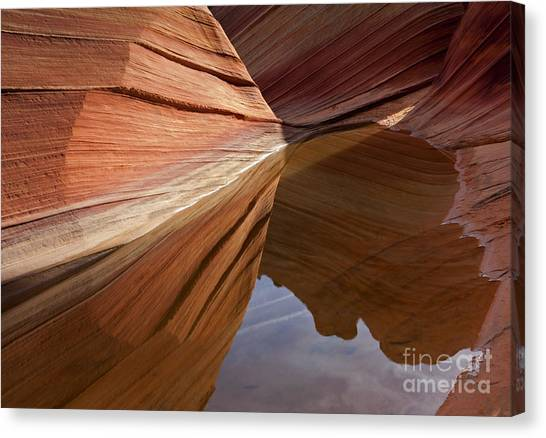 Arizona Coyotes Canvas Print - Wave Reflections by Mike  Dawson