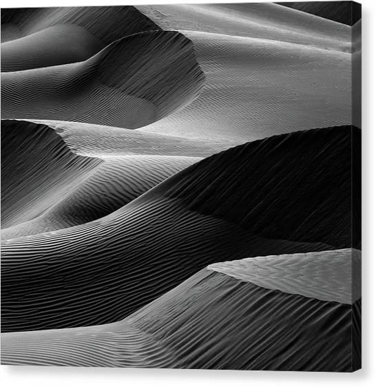 Sand Dunes Canvas Print - Waves In The Sand by Pieter Joachim Van