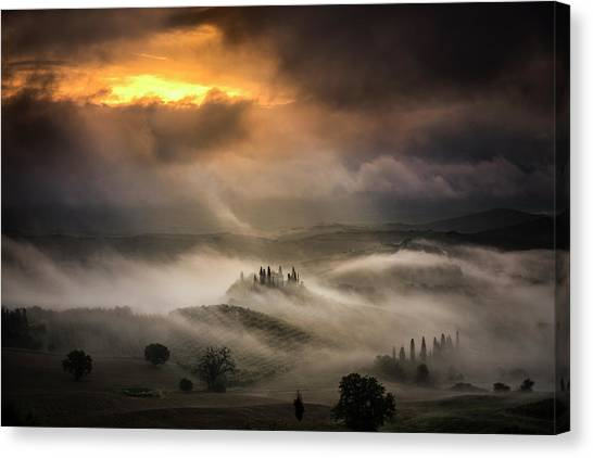 Cypress Canvas Print - Waves Of Fog by Alberto Ghizzi Panizza