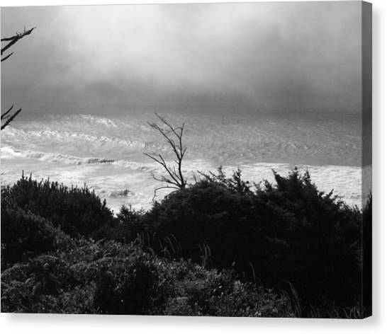 Waves Upon The Land Canvas Print