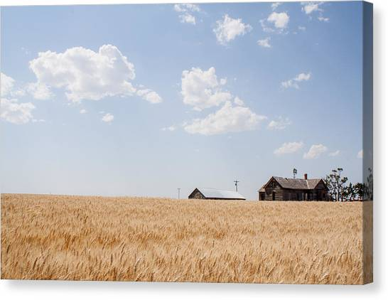 Waving Wheat Homestead Canvas Print