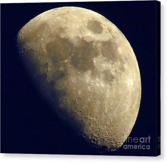 Waxing Gibbous Canvas Print by Lonna Ours