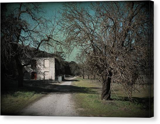 Sycamore Canvas Print - Way Back When by Laurie Search