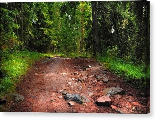 Jenny Lake Canvas Print - Way To The Shrine. Valaam. Northern Russia by Jenny Rainbow