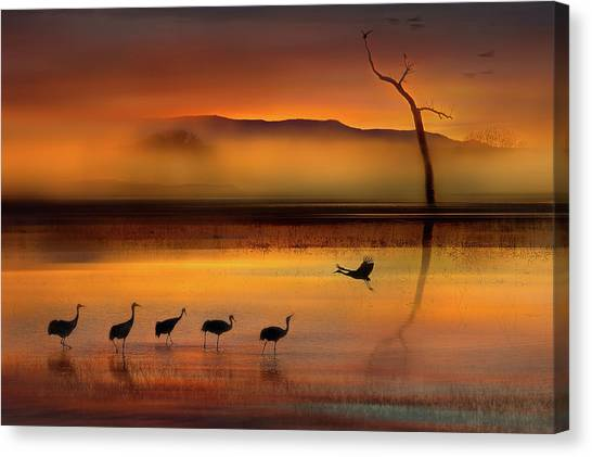 Cranes Canvas Print - We Are Here Waiting For You by Shenshen Dou