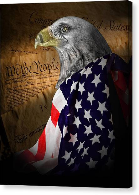 American Flag Canvas Print - We The People by Tom Mc Nemar