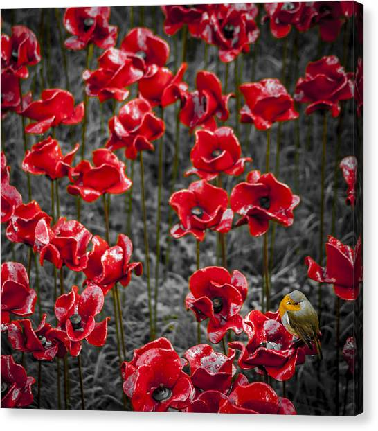 We Will Remember Them Canvas Print by S J Bryant