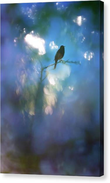 Weather To Fly  Canvas Print