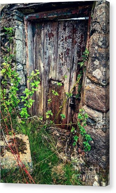 Old Houses Canvas Print - Weathered Door by Adrian Evans