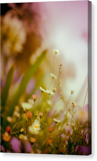 Weeded Desire - Light Canvas Print