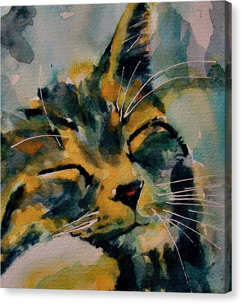 Kittens Canvas Print - Weeeeeee Sleepee by Paul Lovering