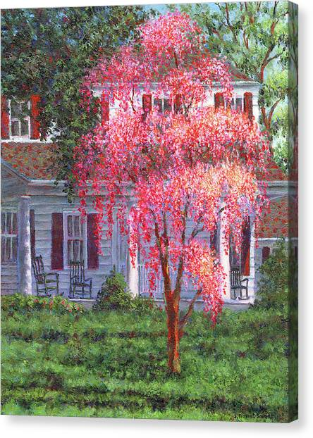Weeping Cherry By The Veranda Canvas Print
