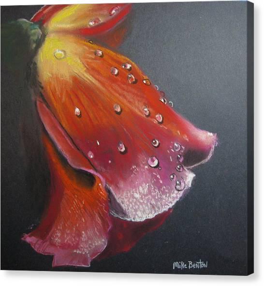 Weeping Flower Canvas Print