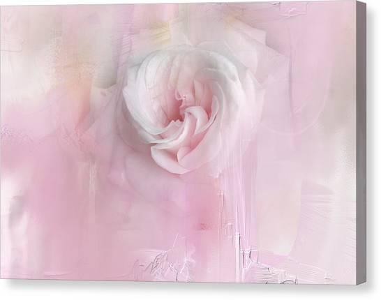 Weeping Rose Canvas Print