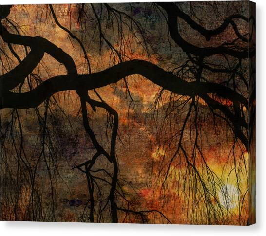 Weeping Willow Sunset Canvas Print