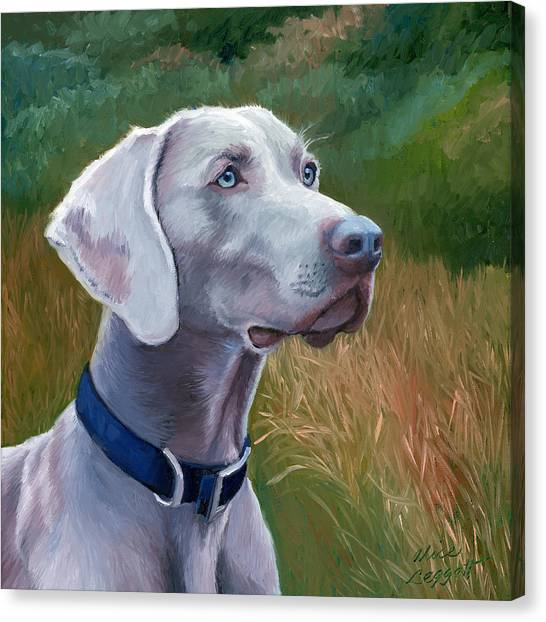 Weimaraners Canvas Print - Weimaraner Dog by Alice Leggett