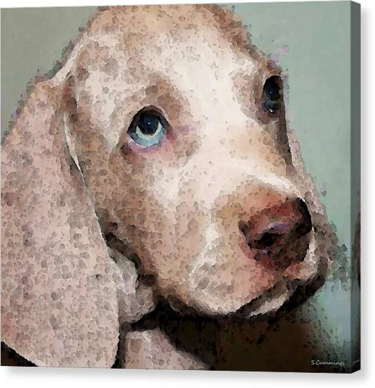 Weimaraners Canvas Print - Weimaraner Dog Art - Forgive Me by Sharon Cummings
