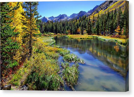 Bishops Canvas Print - Weir Pond by Scott McGuire