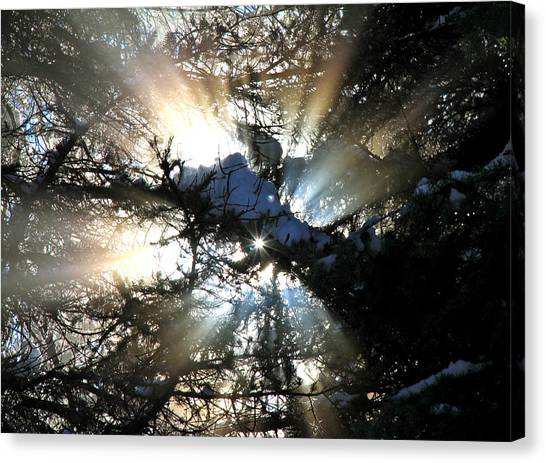 Boise National Forest Canvas Print - Welcome Friends by Ed  Riche