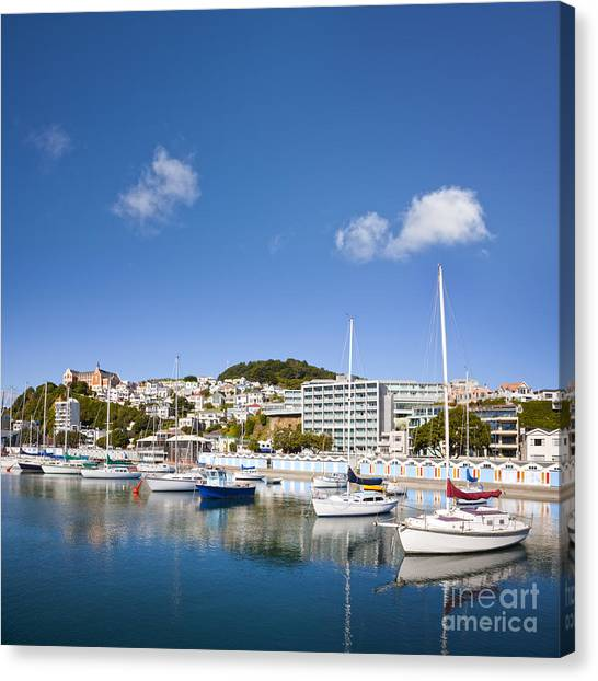 Wellington Oriental Bay Marina New Zealand Canvas Print