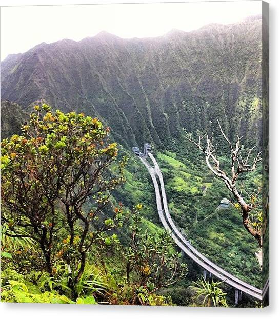 Hawaii Canvas Print - Went On A Little Hike This Morning by Brian Governale