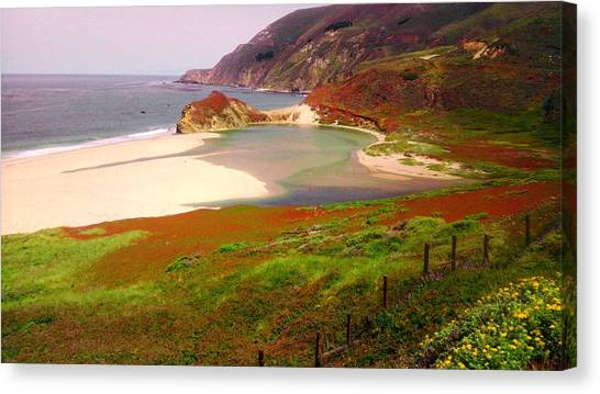West Coast Fields Canvas Print by Sharon Costa